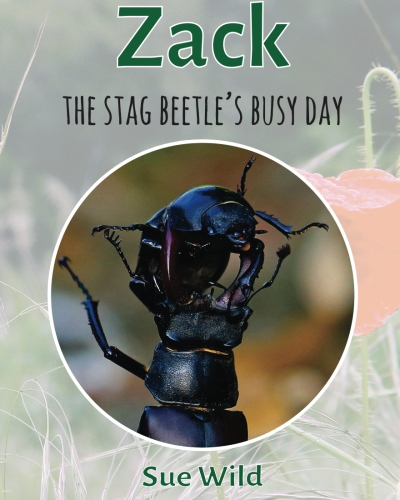 Click here to buy Zack the stag beetles busy day