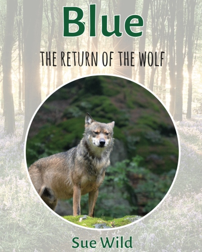 Blue the wolf returns to the U.K.
