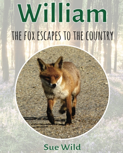 U.K. wildlife bedtime stories William the fox escapes to the country