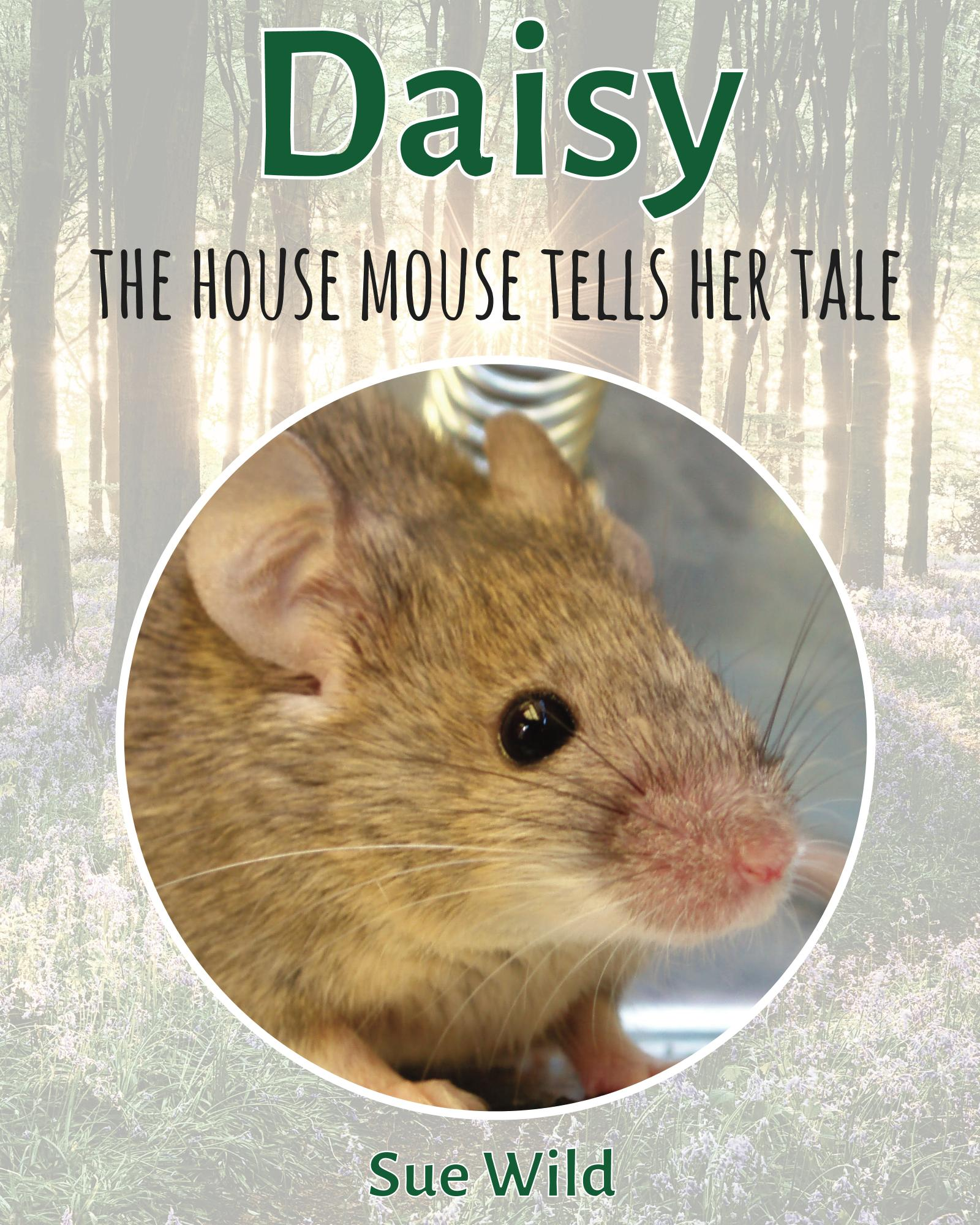 U.K. wildlife children's bedtime stories Daisy the house mouse tells her tale