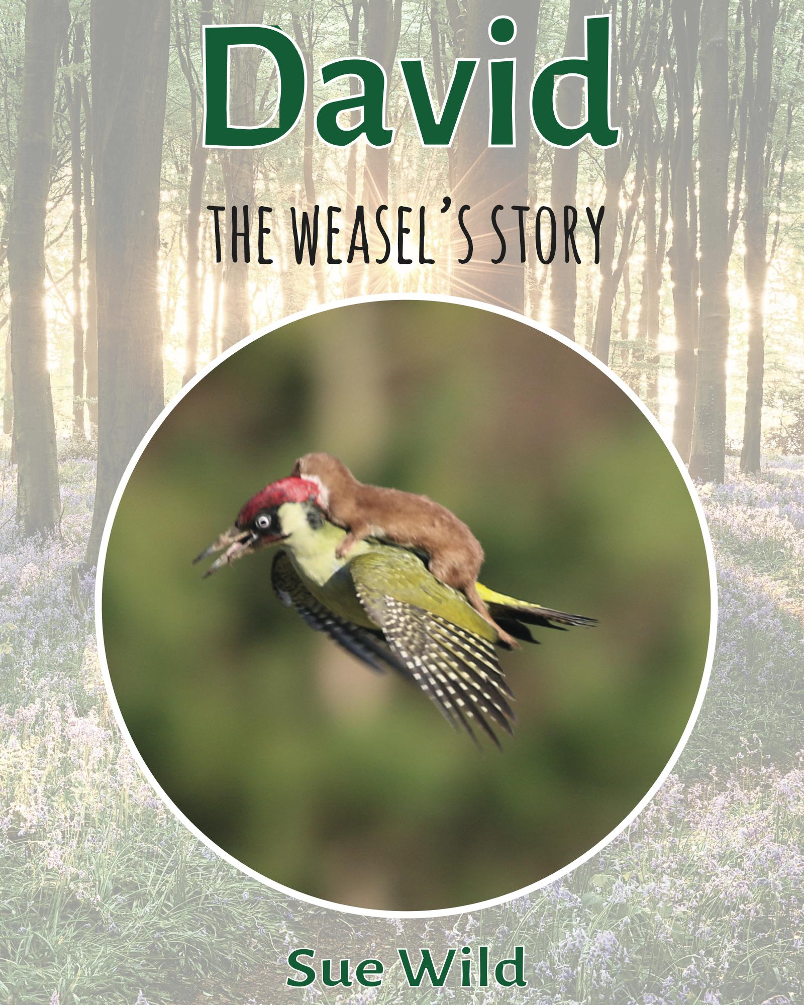 David the weasels story image by Martin Le May weaselpecker