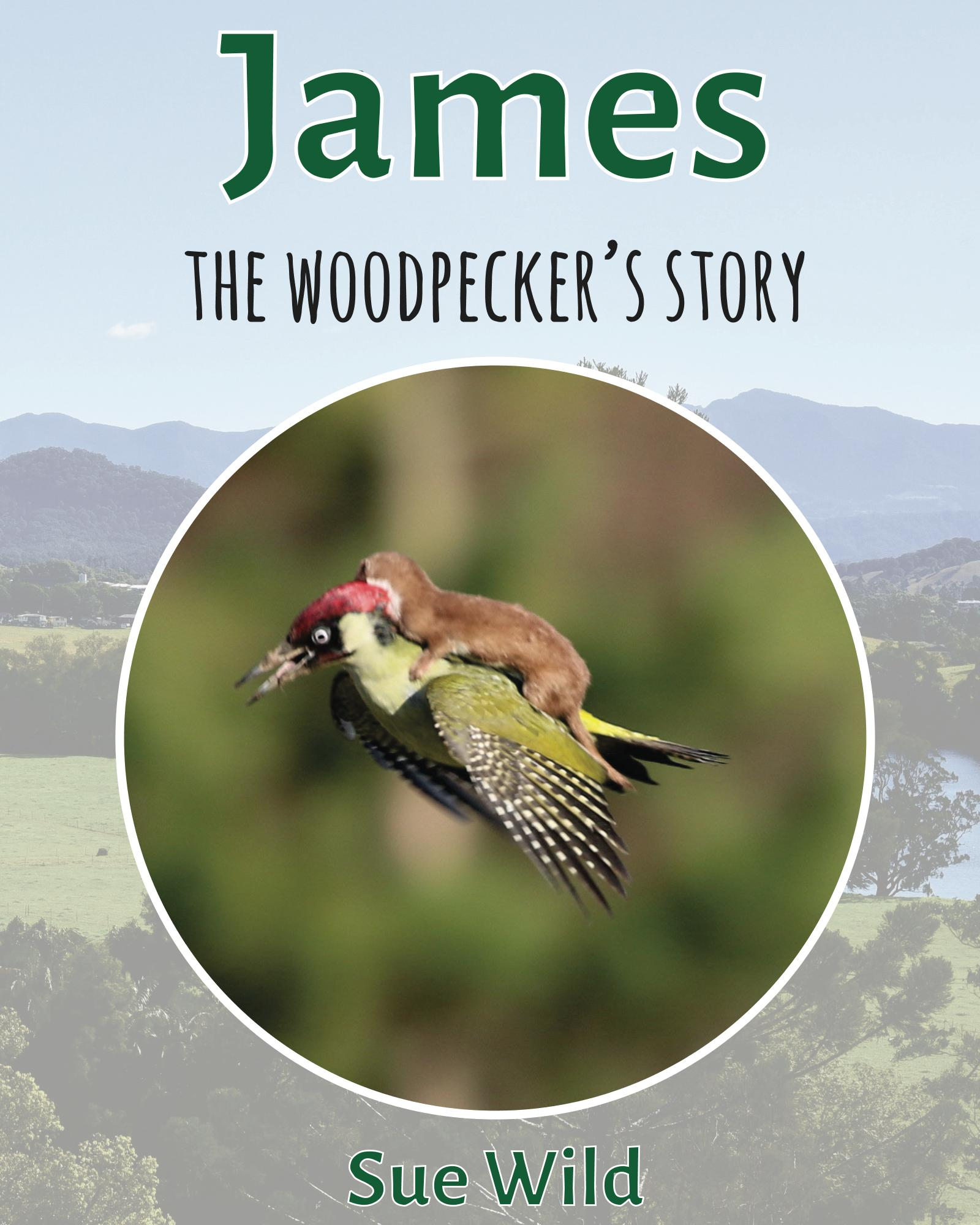 James the woodpecker story image Martin Le May