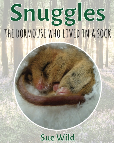 Click to buy Snuggles the dormouse who lived in a sock